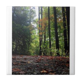 Herbst-Blätter auf einer Schmutz-Straße Fliese