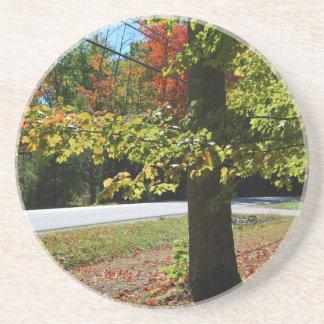 Herbst-Blätter in Maine Getränkeuntersetzer