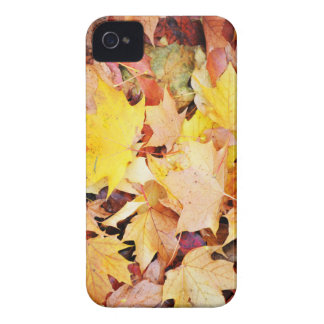 Herbst-Blätter iPhone 4 Cover