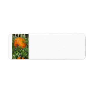 Herbst-Kürbisgarten Adressen-Etikett