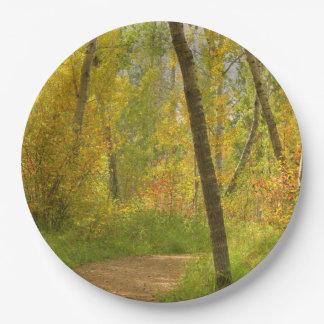 Herbst-Waldland Pappteller