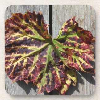 Herbstliches Trauben-Blatt auf Holz Getränkeuntersetzer