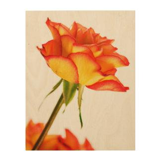 Herbstsplendor-Feuer-Rosen-Blumen-Holz-Leinwand Holzdruck