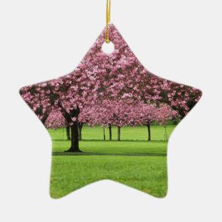 HERRLICHE KIRSCHE MIT BLUMEN KERAMIK Stern-Ornament