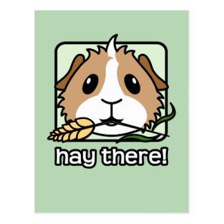 Heu dort! (Meerschweinchen) Postkarten