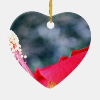 Hibiskus 4 weihnachtsornament
