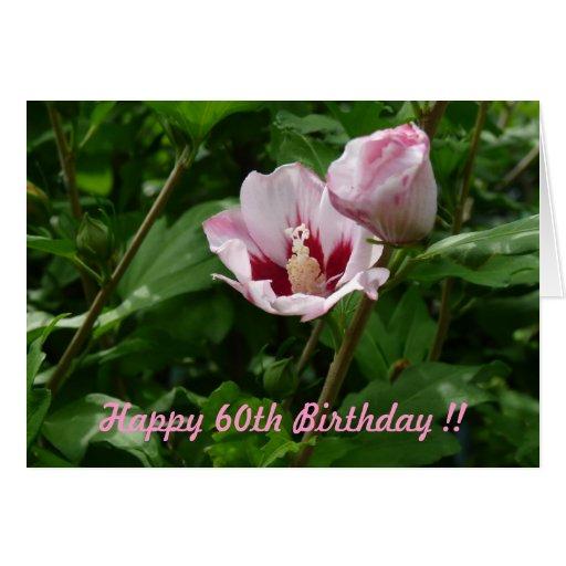 Hibiskus Hibiscus 60. Geburtstag Jubiläum Grußkarten