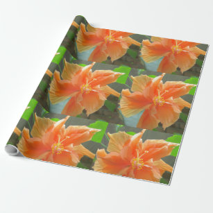 Orange Blumen Geschenkpapiere Zazzle At