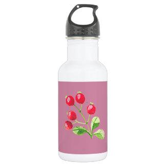 Hipster-Frucht Edelstahlflasche