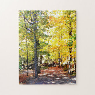 Hohe Stufe farbiges Herbst-Weg-Puzzlespiel Puzzle