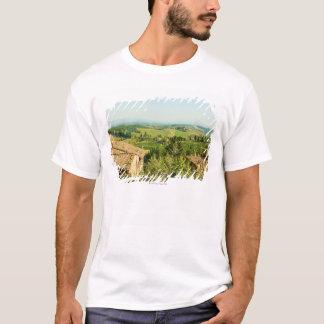 Hohe Winkelsicht der Häuser mit Weinberg in T-Shirt