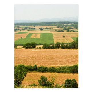 Hohe Winkelsicht eines Feldes, Siena-Provinz, Postkarte