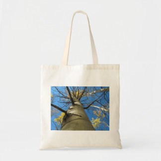 Hoher Zitterpappel-Baum Budget Stoffbeutel