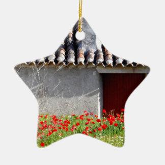 Hola Espana/hallo Spanien-Reise Keramik Stern-Ornament