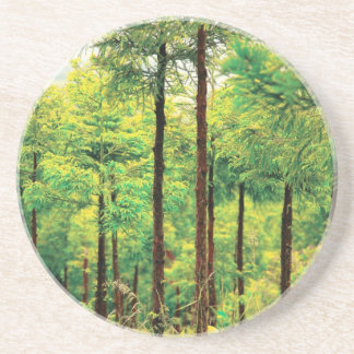 Holz der japanischen Zeder Sandstein Untersetzer