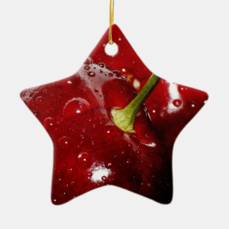 Honeysuckle_sweet Geschenke Keramik Stern-Ornament