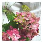 Hortensienblüte trifft auf Regen und Dill Karte