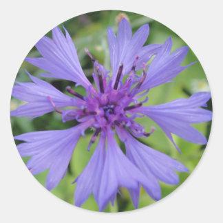 Hübsche blaue Kornblume Runder Aufkleber