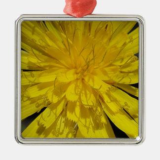 Hübsche Löwenzahnblüte Silbernes Ornament