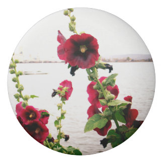 Hübscher Hollyhock mit Blumen Radiergummis 0