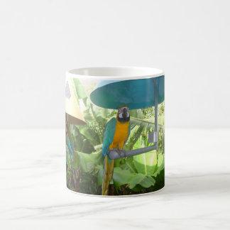Hübscher Papagei Teetasse