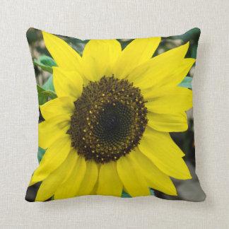 Hübsches gelbes Sonnenblumethrow-Kissen Kissen