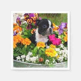 Hund Bostons Terrier Papierserviette