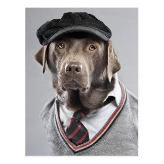 Hund in der Strickjacke und in der Kappe Postkarte