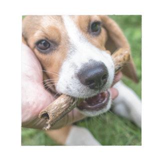 Hund mit Stock Notizblock