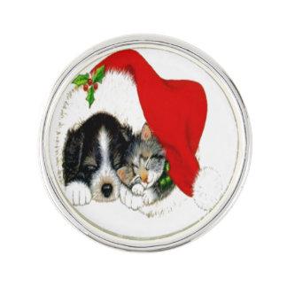 Hund und Katze, die Weihnachtsmannmütze teilen Anstecknadel