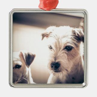 Hunde Silbernes Ornament