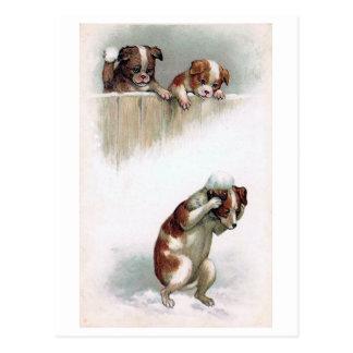 """""""Hunde, welche die Schneebälle"""" Vintag spielen Postkarte"""