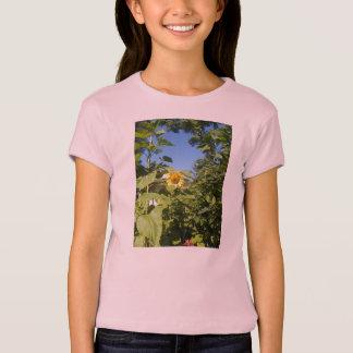 HÜTTEN-SONNENBLUME T-Shirt