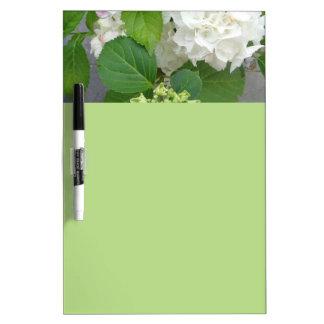 Hydrangea-Blumen-Grün-weiße Natur-Garten-Pflanzen Memo Board