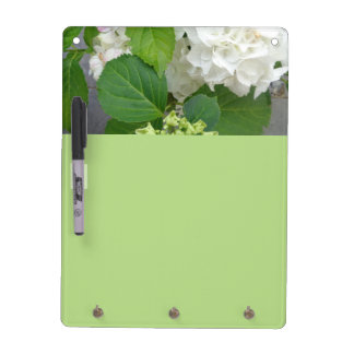 Hydrangea-Blumen-Grün-weiße Natur-Garten-Pflanzen Memo Boards