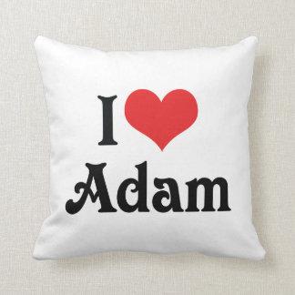 I Liebe Adam Zierkissen