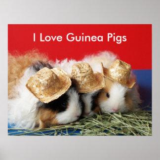 I Liebe-Meerschweinchen-Plakat Poster