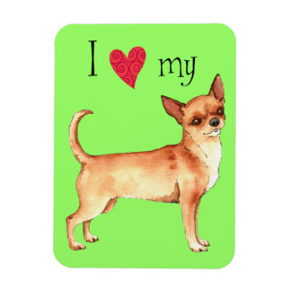 I Liebe mein Chihuahua Magnet