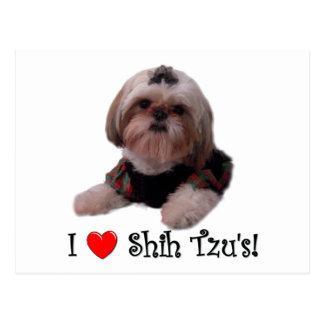 I Liebe Shih Tzu Postkarte