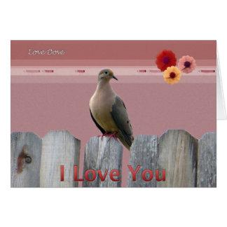 I Liebe Sie Liebe-Taube Grußkarte