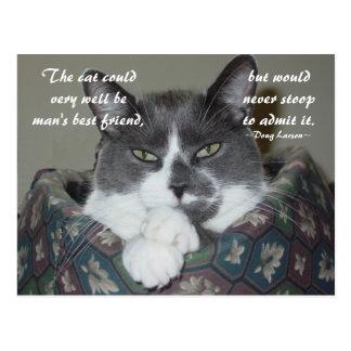 Ich bin Katze… Postkarte