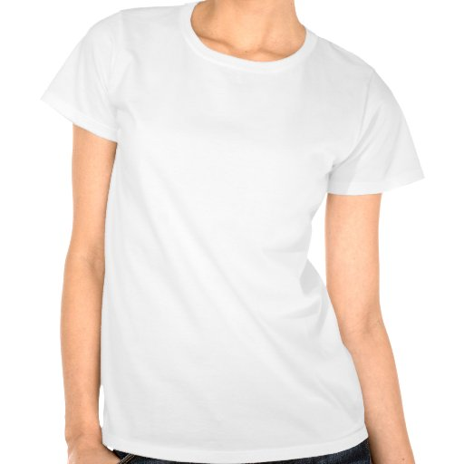 Ich bin nett t shirts