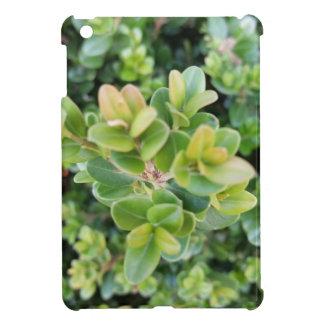 Ich fülle Minifall mit Blätter und Pflanzen auf iPad Mini Hülle