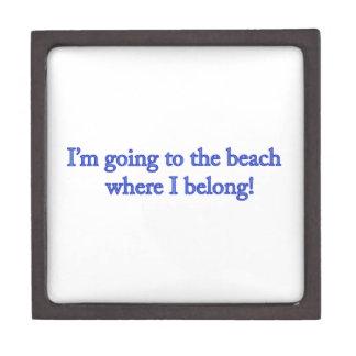 Ich gehe zum Strand Kiste