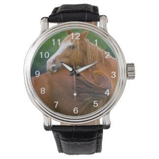 Ich habe Ihre Rückseite Uhr