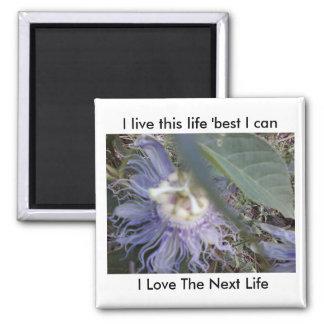 Ich lebe dieses Leben, gut ich kann, i-Liebe das Quadratischer Magnet
