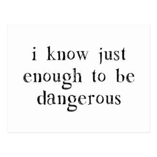 Ich weiß gerade genug, um gefährlich zu sein postkarte