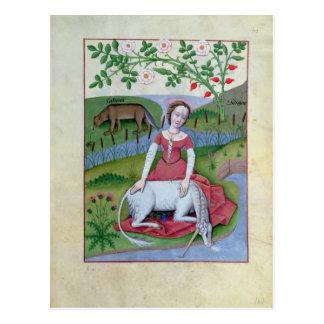 Illustration vom 'Buch der einfachen Medizin Postkarte