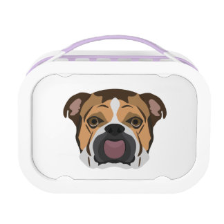 Illustrations-Englisch-Bulldogge Brotdose