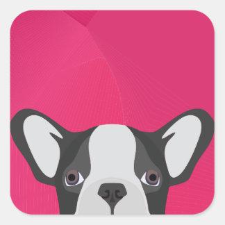 Illustrations-französische Bulldogge mit rosa Quadratischer Aufkleber